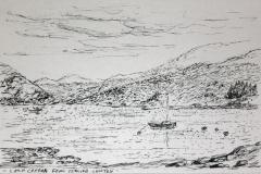 1_Creran-Sealife-ink-sketch-28mar08