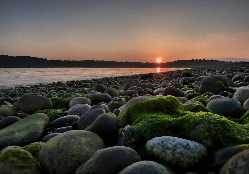 mod_S-A3_sunset_green_seaweed_stones_hdr_